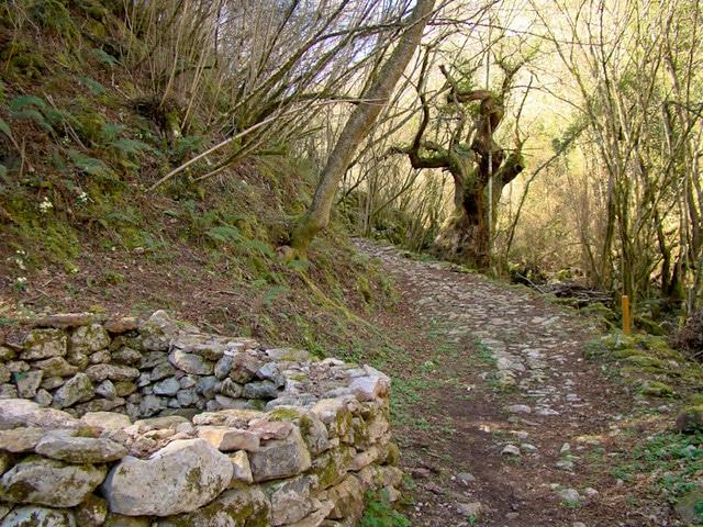 la ruta encantada del Beyu Pen el entorno
