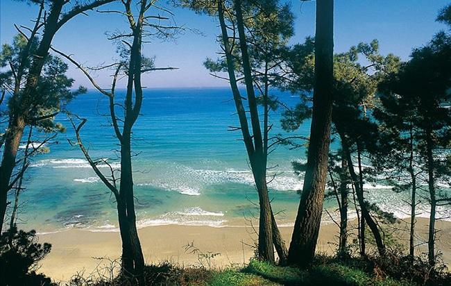 mejores playas cerca de cudillero la playa de oleiros