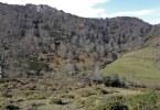 cueva-de-orandi-ruta-asturias