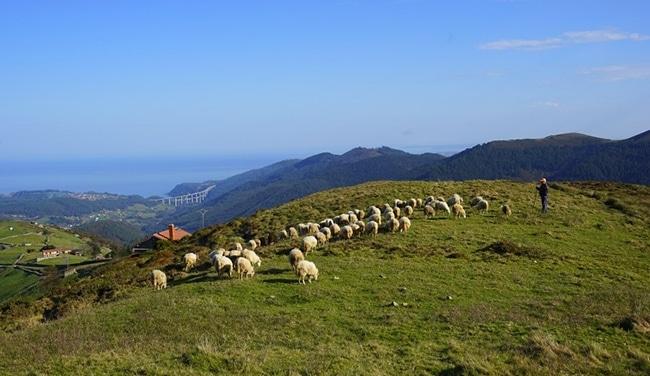 rutas pro las vaquiras en asturias