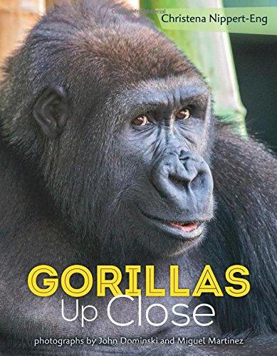 gorillasupclose