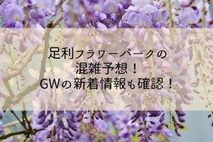 足利フラワーパークの混雑予想!GW2019年の新着情報も確認!