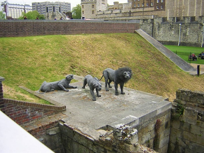 Tower of London Menagerie