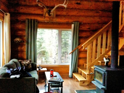 Shilo's Chalet couch and woodstove