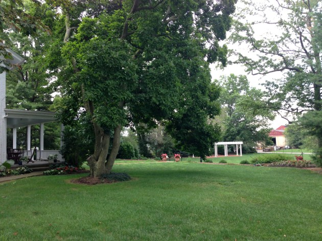 Wedding Location 1: Manor View Inn Lawn