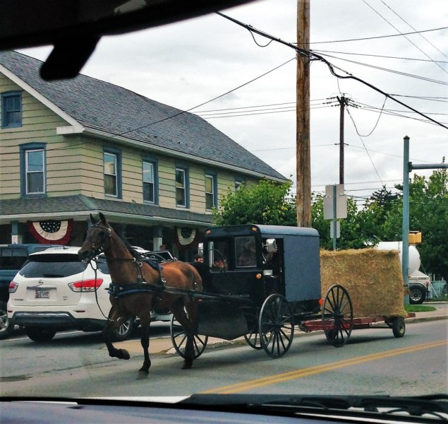 Amish Carriage towing Hay