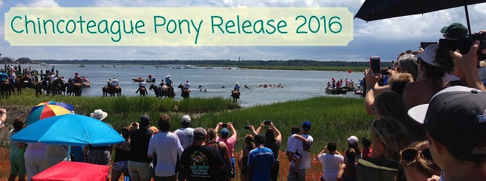 pony release title