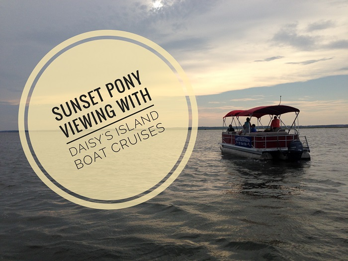 Sunset Pony Viewing with Daisey's Island Boat Cruises