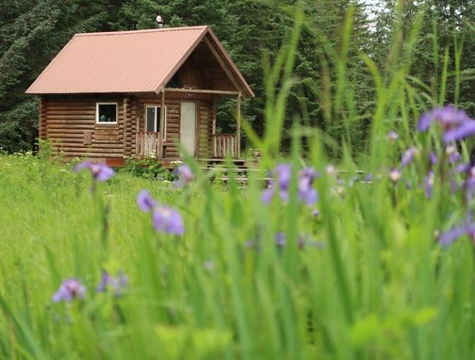 Cowee Meadows Cabin