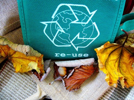 Reusable bag with recycle logo