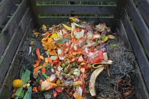 Food waste compost pile