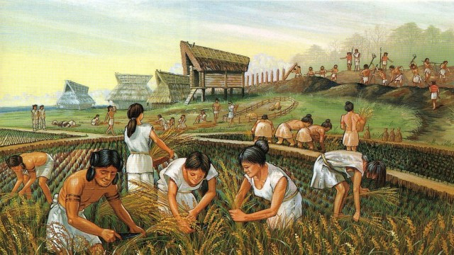 الثورة الزراعية