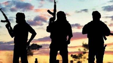 الإرهاب ونقد المقولات السائدة