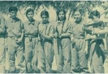 مشاركة الفتيات في المقاومة الشعبية ضد العدوان الثلاثي