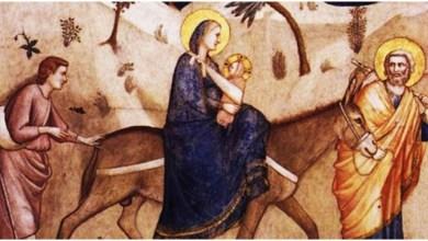مشهد من فيلم يسوع في مصر خيري بشارة
