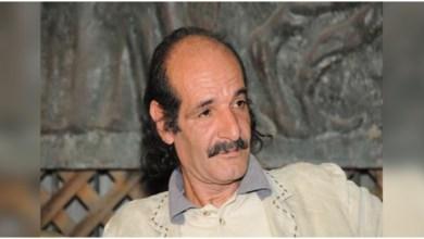 الشاعر فتحي عبد الله