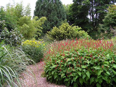 Dorset Coast's Knol Gardens