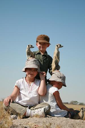 TOP LUXURY SAFARI WILDLIFE ENCOUNTER