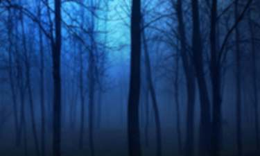 Dreamtime forest blue. Characters for Phantasms.
