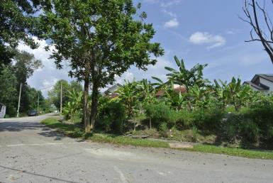 Mutiara Bangi Bungalow Land