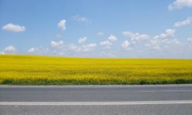 Horizontal Road
