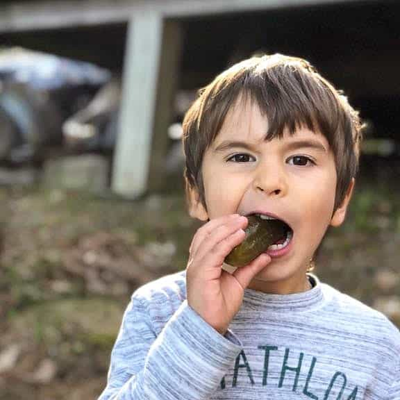 chilc eating pickle in the woods