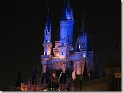 夜のシンデレラ城