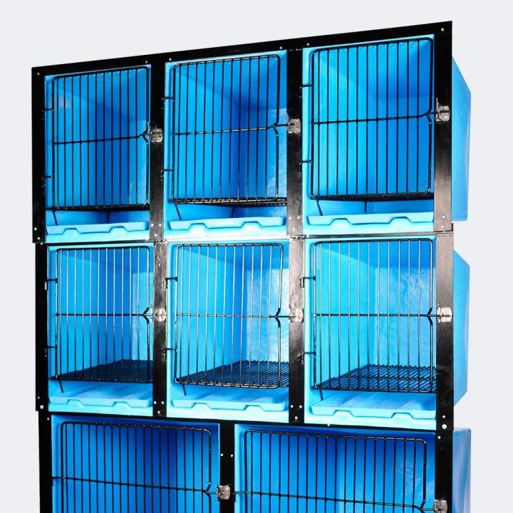 canil azul para pet shop atacama