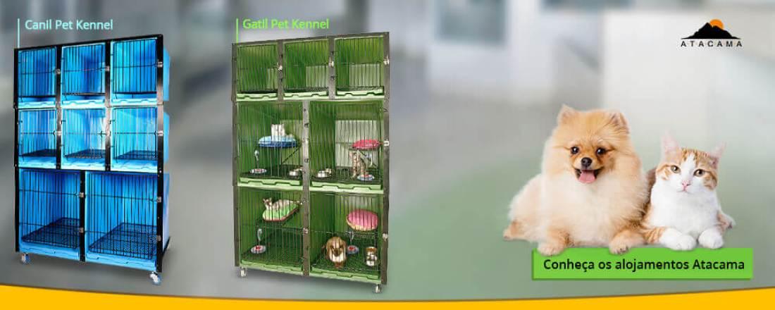comprar-alojamento-Canil-gatil-para-pet-shop