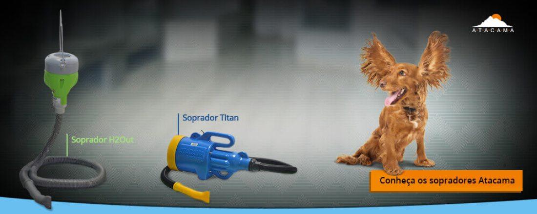 comprar-soprador-para-pet-shop