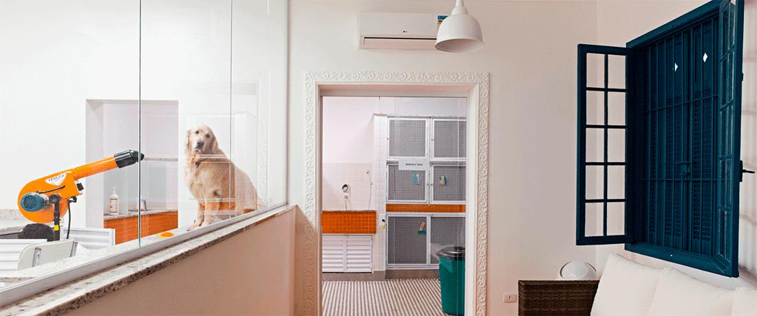 estrutura-para-montar-banho-e-tosa