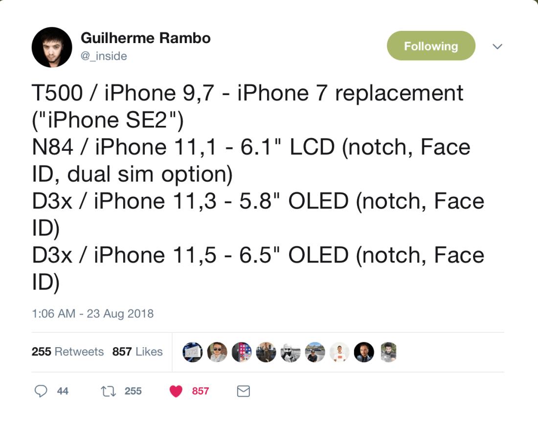 Guilherme Rambo SE2 Tweet