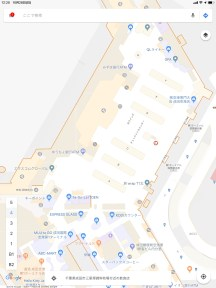 Google Maps Terminal 1 Check-in area