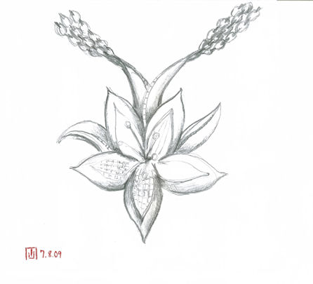 Pencil Sketch for Lily Necklack by Joana Miranda