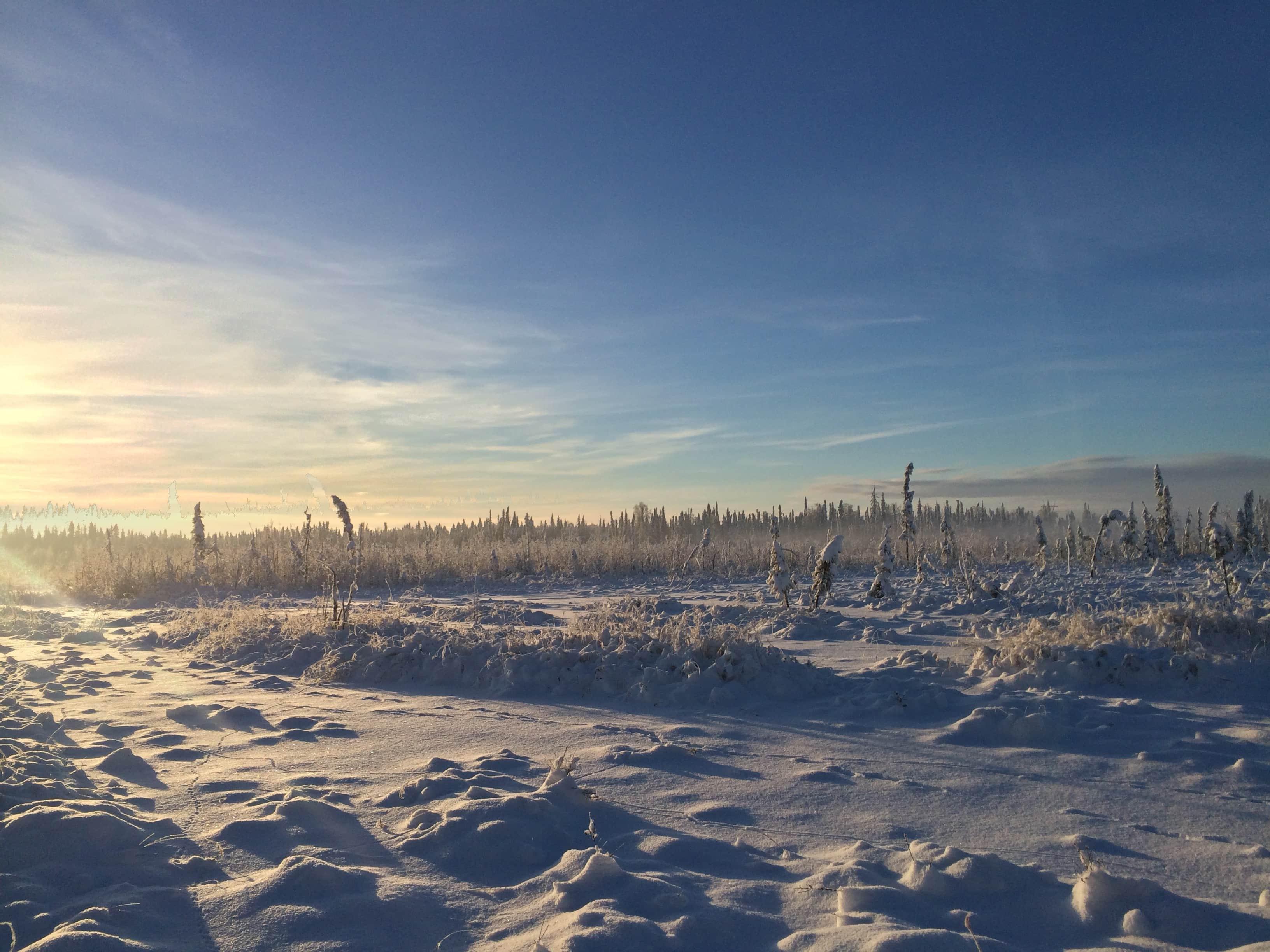 Seven: a Snow Odyssey