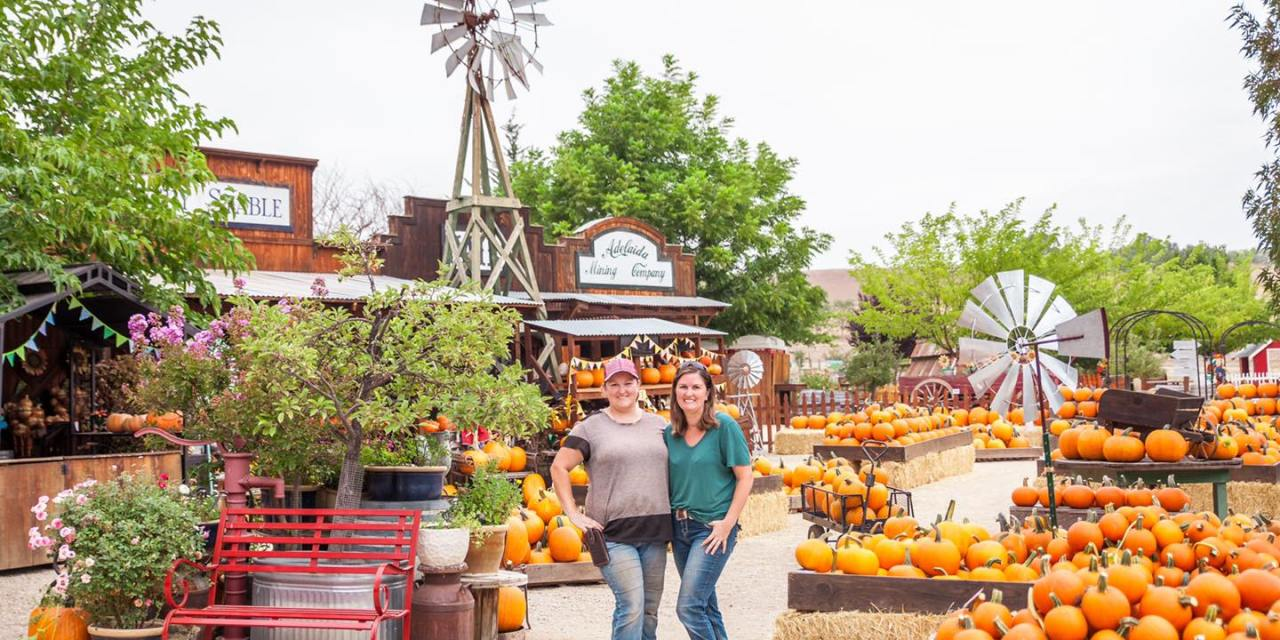 "Jack Creek Farm Announces their ""Pumpkin Palooza"" and ""Field Trip in a Box"""