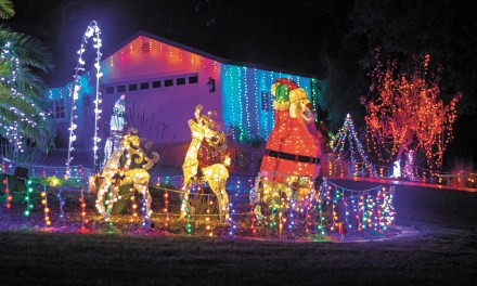 Atascadero Resident Lights Up the Night