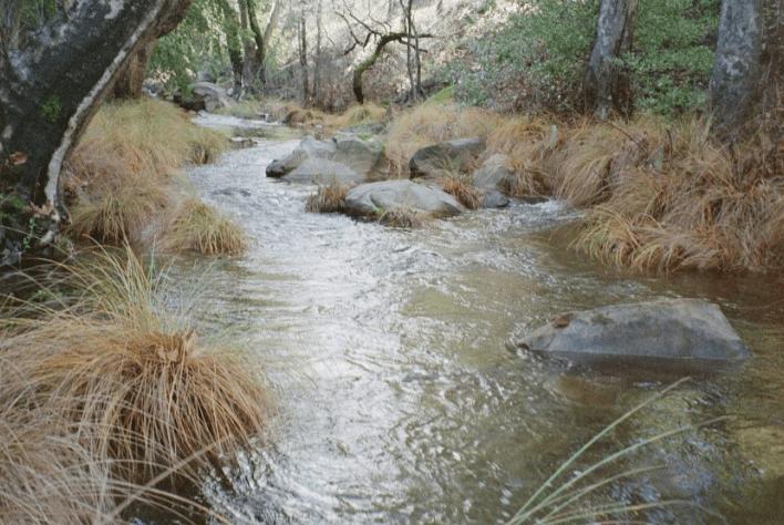 Atascadero Creek Clean-Up