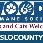 AHS Interact Donates to North County Woods Humane Society