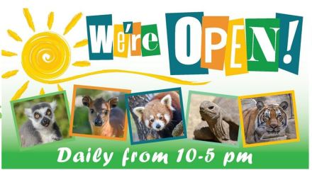 Charles Paddock Zoo Re-opens Friday, Jan. 29