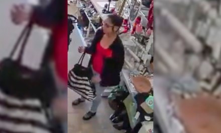 Video from North SLO County Business Captures Shoplifter