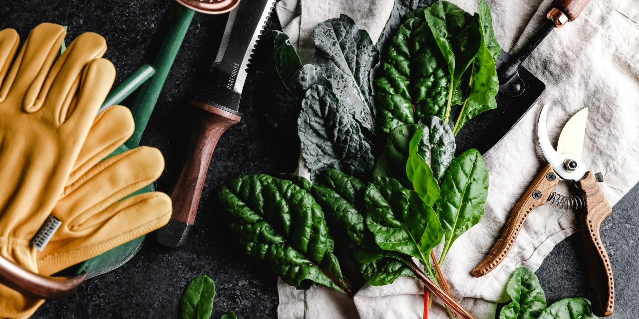 Fall In Love With Cool-Weather Gardening For A Healthy, Hefty Homegrown Harvest