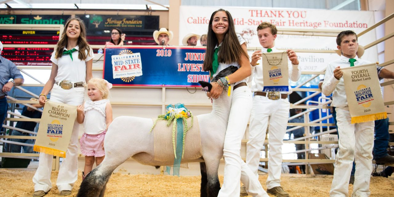 Livestock Shows and Auction Return To Mid-State Fair