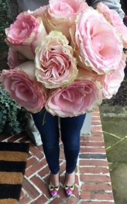 pinkflower2.jpg