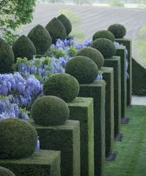 French-topiaries.jpg