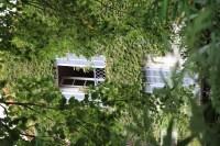 Open window in L'Isle-sur-la-Sorgue