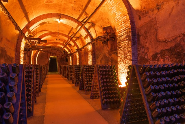 champagne and canapés wine cave