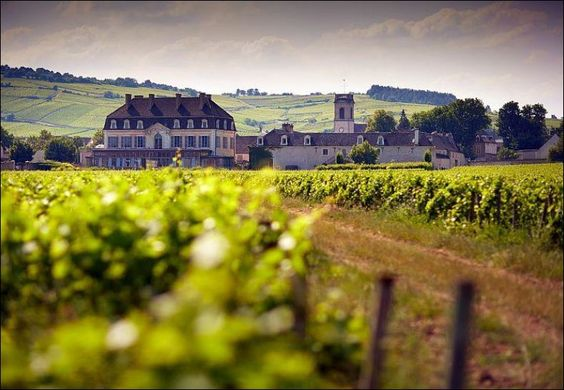 The countryside of Burgundy, France