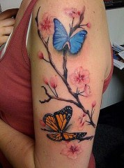 Arm as a place for butterflies to rest, blue and orange