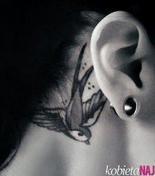 swallow tatoo behind ear